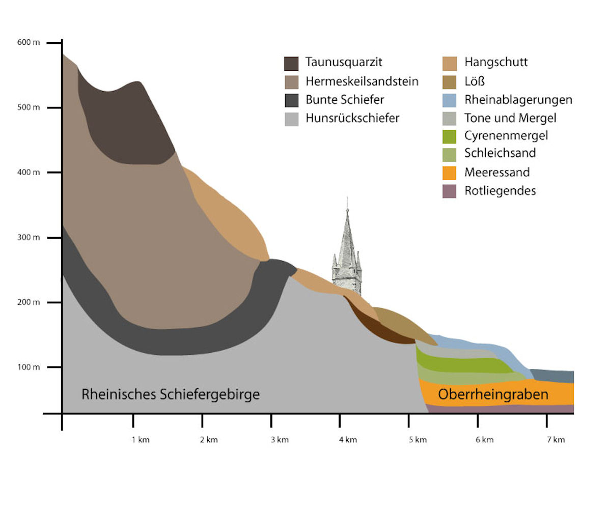 Rheingau bei Hattenheim