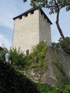 Die Burgruine Frauenstein