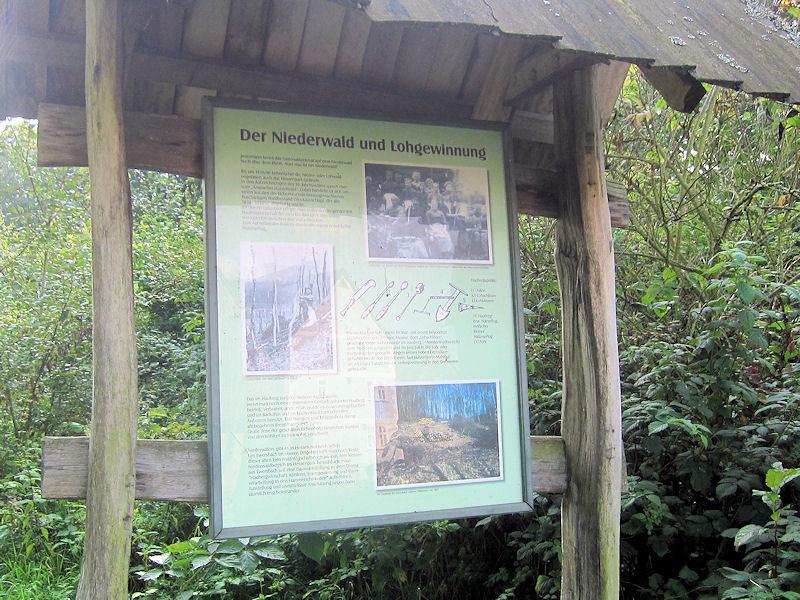 Informationstafel Walderlebnispfad