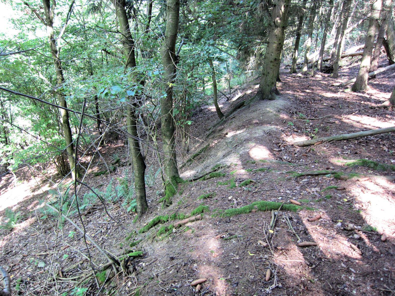 Terrassen im Wald