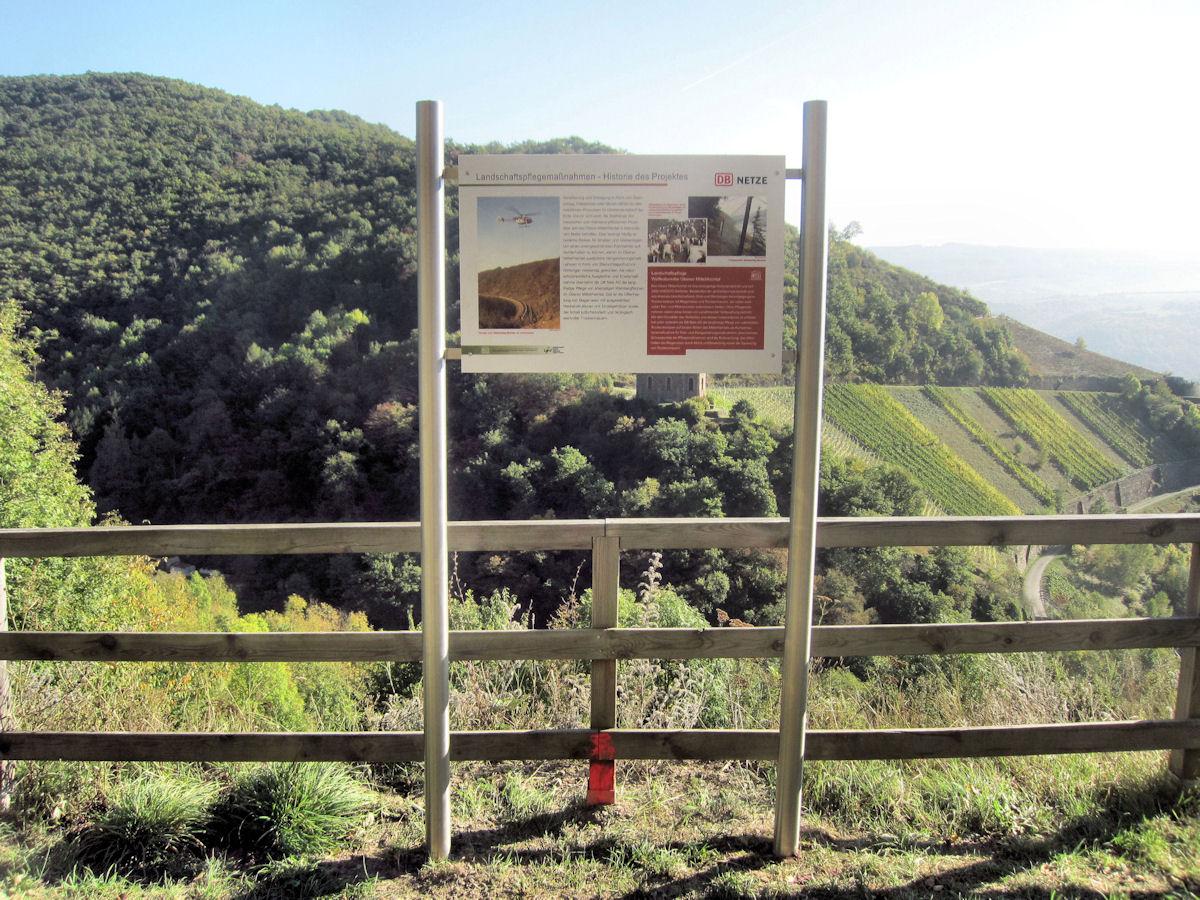 Landschaftspflegemaßnahmen im Oberen Mittelrheintal (