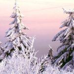 Winter im Taunus