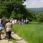 Wanderungen des Naturpark Taunus im Mai 2018