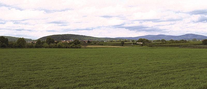 Blick auf den Kapellenberg