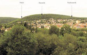 Bodenlandschaftselemente am Kapellenberg