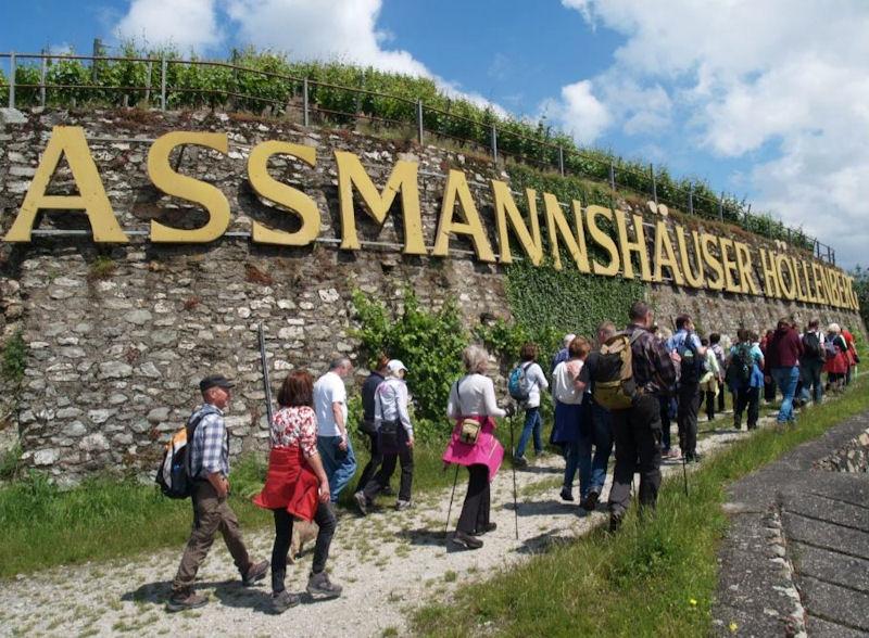 Wanderer bei Assmannshausen