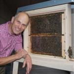 Bienenwoche im Taunus-Informationszentrum TIZ